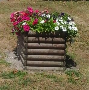 fleurs bac